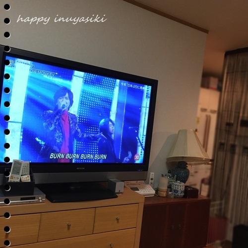 mini16IMG_6333-20160920-2.jpg