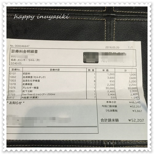 mini16IMG_6646-20160520.jpg