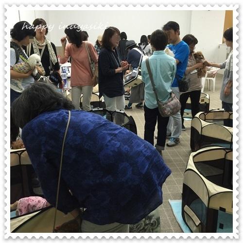 mini16IMG_6725-20160523.jpg