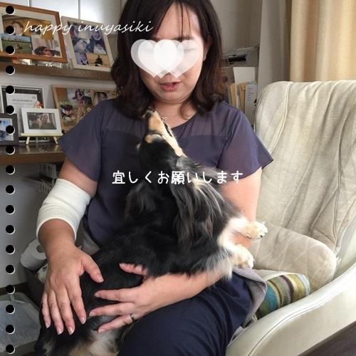mini16IMG_7012-20161002.jpg