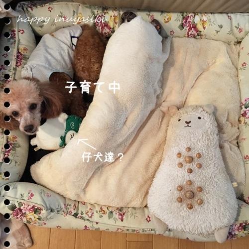 mini16IMG_7165-20161004.jpg
