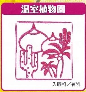 IMG_0004植物