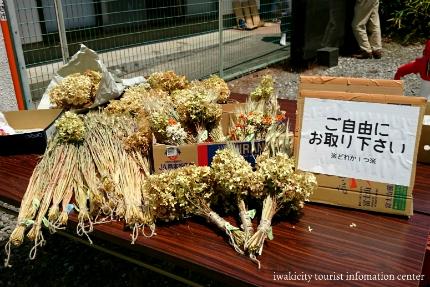 第15回滝富士登山18