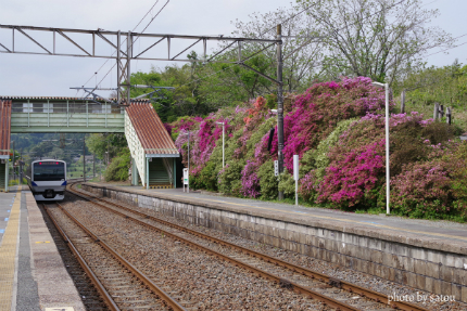 JR末続駅 ツツジ1