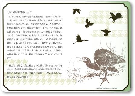 0519~0719いわき市勿来関文学歴史館 企画展「鳥の文化史」-2