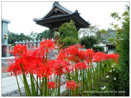 駅からハイキング「磐城平城の歴史と出会う いわき街なかめぐり」5