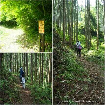 第15回滝富士登山7