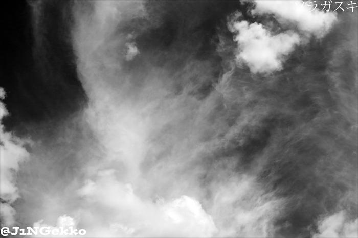 皇紀2676年8月21日 14時45分 ヽ( ´¬`)ノ モノクロッ!