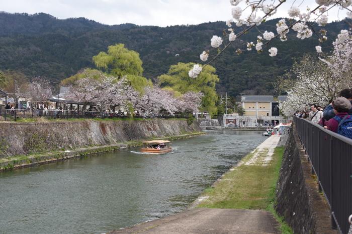 琵琶湖疎水と遊覧船