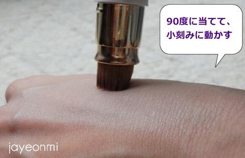 フローフシ_エリア ファンディ (5)