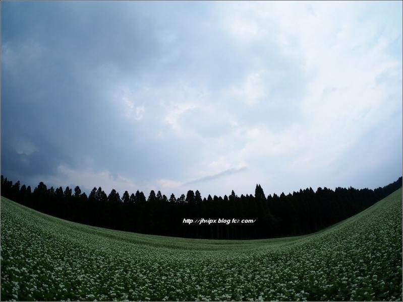 P9107807(blog).jpg