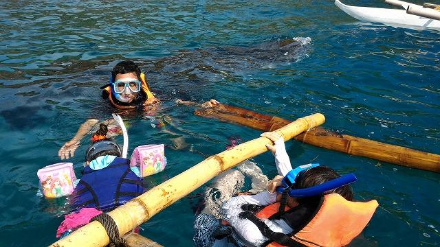ジンベイザメとシュノーケル