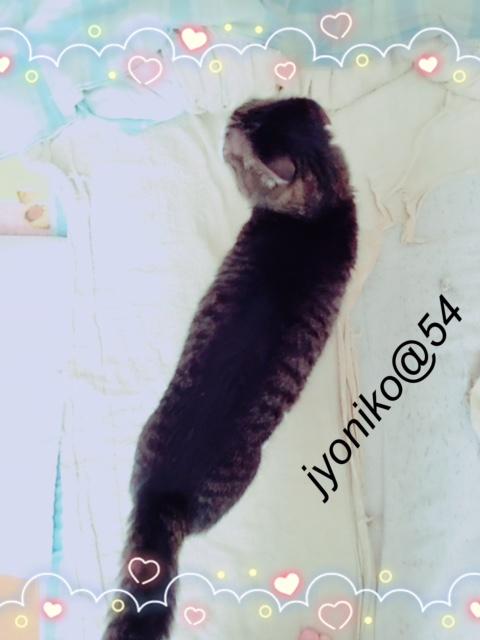 jyoni1