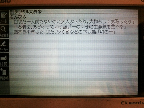 cyugokugo6.jpg