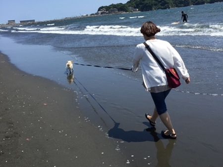 海!歩くぞー!!