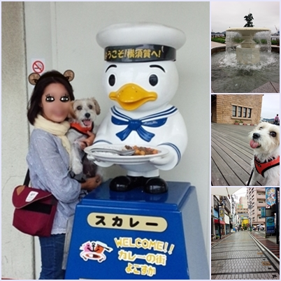 横須賀ページ