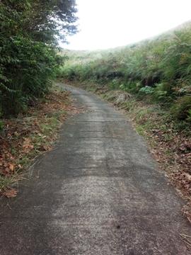 稲取細野高原遊歩道