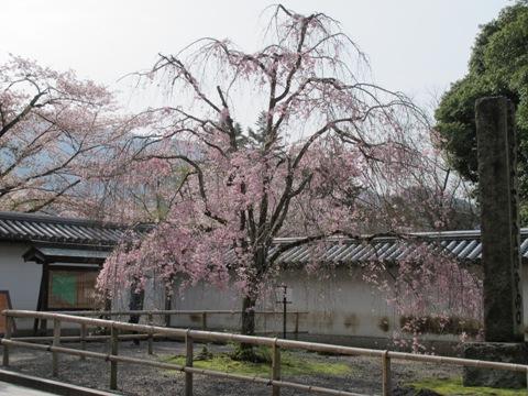 醍醐寺 003