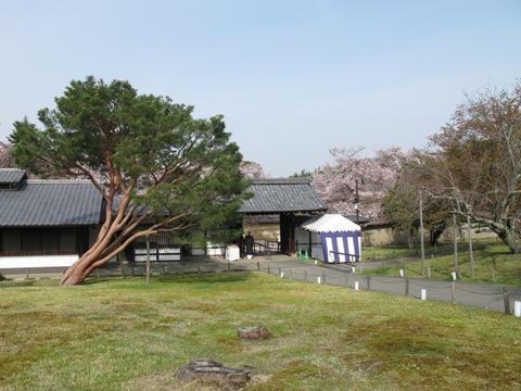 醍醐寺 023
