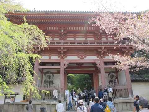 醍醐寺 027