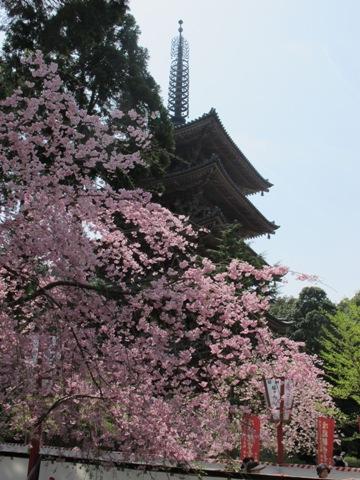 醍醐寺 040