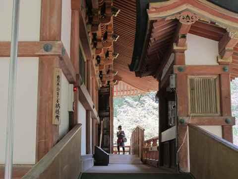 醍醐寺 051
