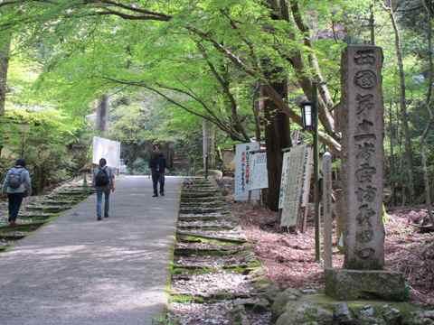 醍醐寺 061