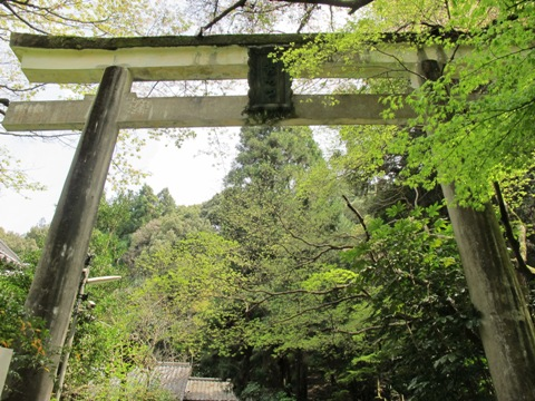 醍醐寺 062