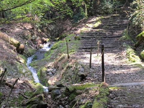 醍醐寺 069