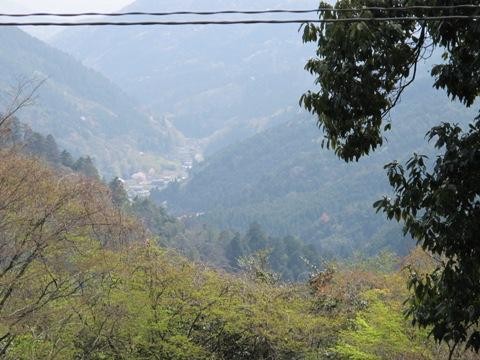 醍醐寺 096