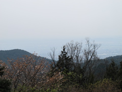 醍醐寺 102