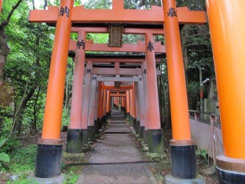 京都伏見 071