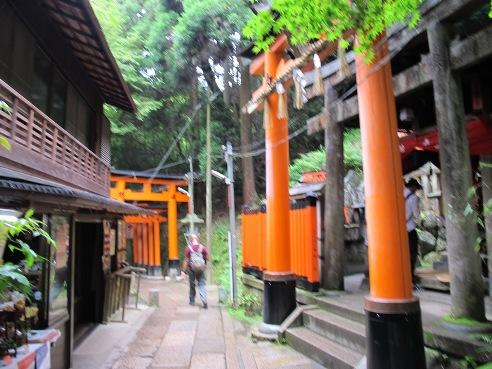 京都伏見 109