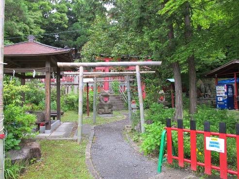 京都伏見 145