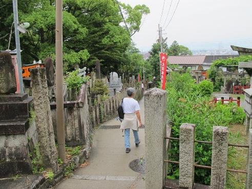 京都伏見 147