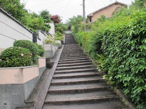京都伏見 178