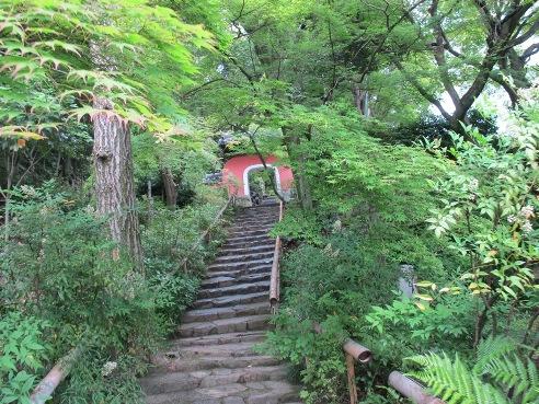 京都伏見 187
