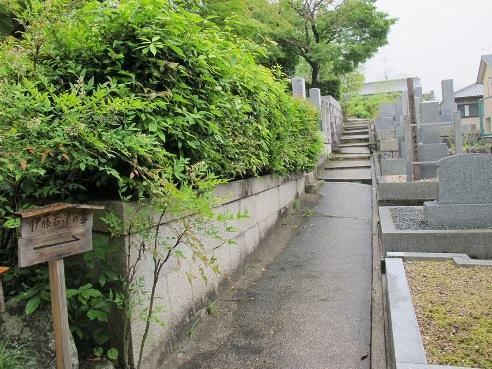 京都伏見 186