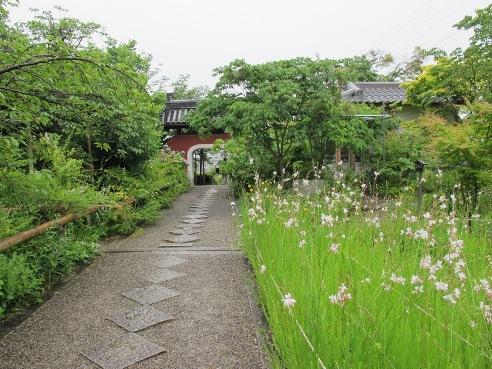 京都伏見 197