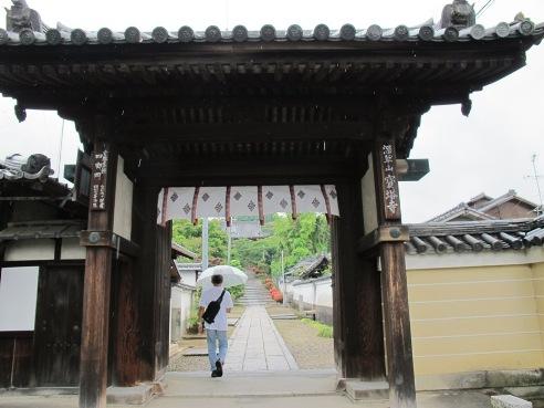 京都伏見 201