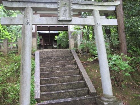 京都伏見 224