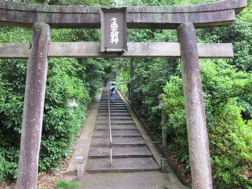 京都伏見 228