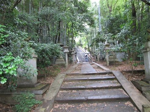 京都伏見 229