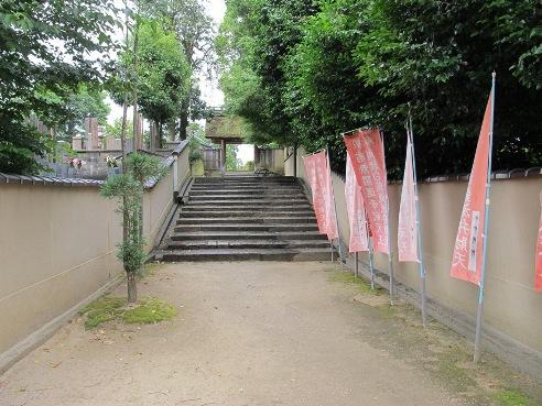京都伏見 241