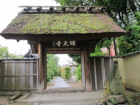 京都伏見 242