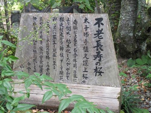 東奈良より 110