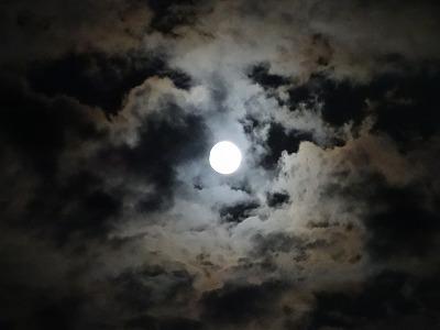 レイキ月の癒し