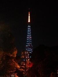東京タワー グリーン