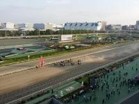 特別区競馬組合に関する学習会