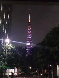 世界タワー会議カラー